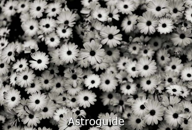 astroguide-9879823-2